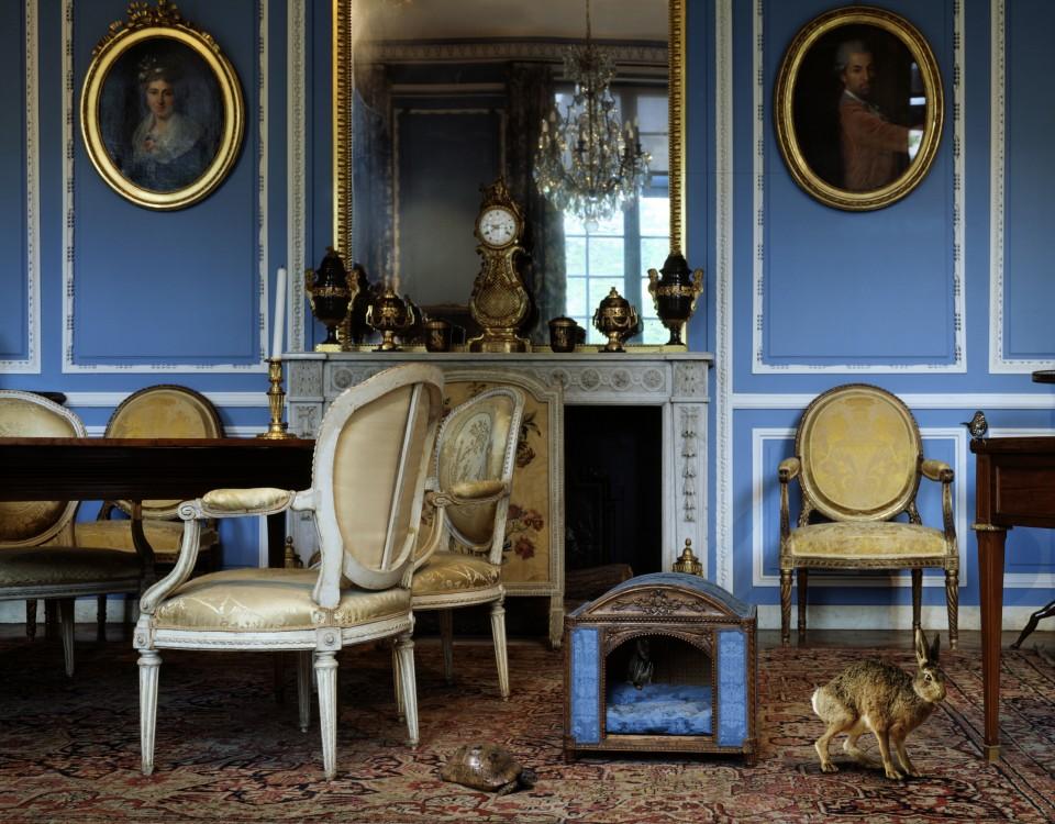 The Blue Salon Louis XVI 4