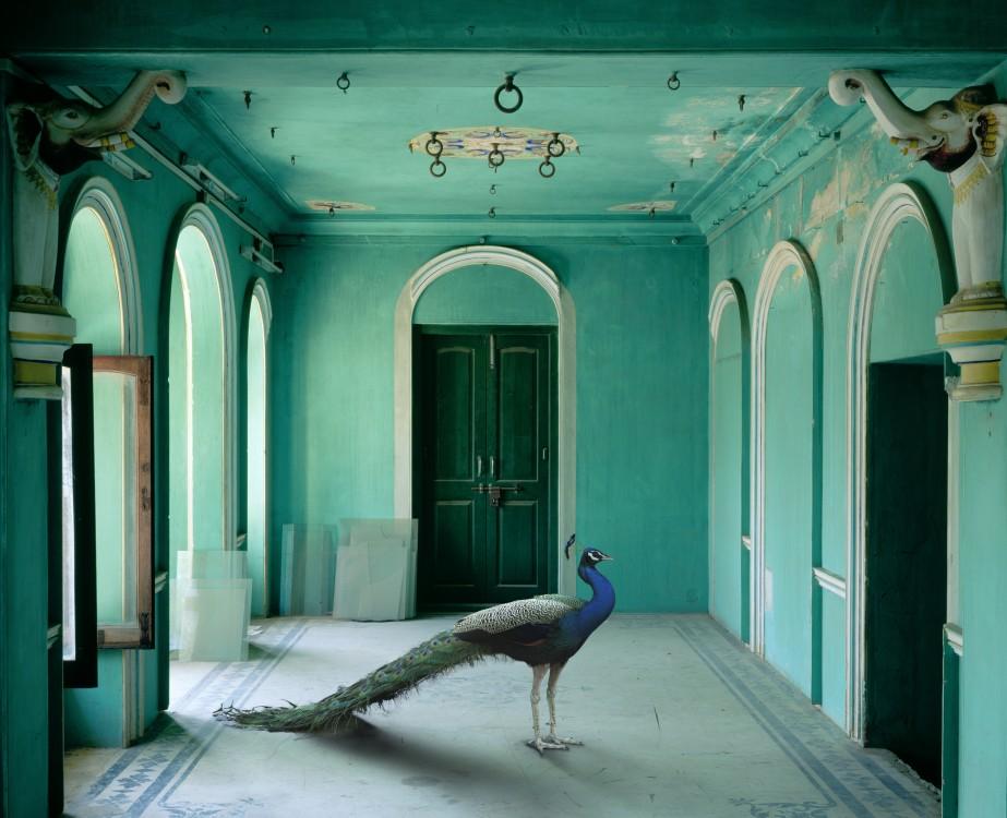 The Queen's Room